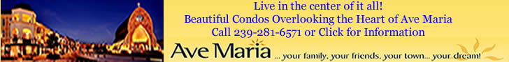 Ave Maria Realty Top